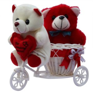 anishop-two-cute-teddy-with-a-tricycle-gift-set