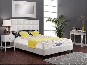 DREAMZEE ORTHOCARE MEMORY FOAM EUROTOP 6 MATTRESS