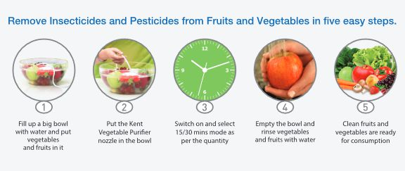 Vegetable Purifiers Review